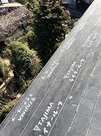 横浜市ジンカリウムディプロマット被せ工法